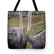 Ostrich Twins 2 Tote Bag