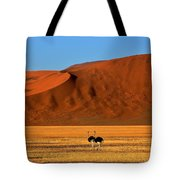 Ostriches At Sossusvlei Tote Bag
