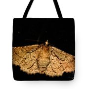 Other Side Of The Moth On The Window Tote Bag