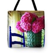 Otisco Morning Tote Bag