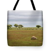 Ottenby Tote Bag
