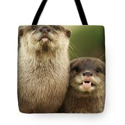 Otter And Cub Tote Bag
