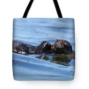Otter Bliss Tote Bag