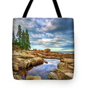 Otter Point Reflections Tote Bag