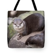 Otters In Arms Tote Bag