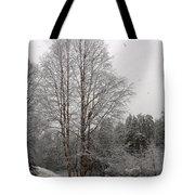 Oulanka 2 Tote Bag