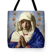 Our Lady Of Health Tote Bag