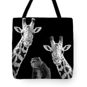 Our Wise Little Friend - Monkey And Giraffes In Black And White Tote Bag