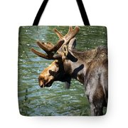 Out For Lunch Tote Bag