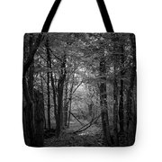 Out From The Darkness Tote Bag