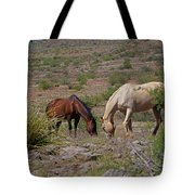 Out In The Open Range Tote Bag