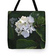 Out In The Wilds Tote Bag