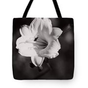 Out Of Darkness Into Light - Wbw Tote Bag