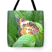 Out Of Hiding Tote Bag