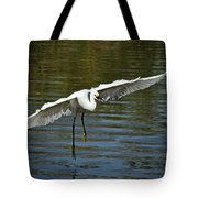 Out Of My Way  Tote Bag