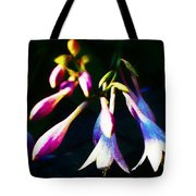 Out Of The Night Tote Bag