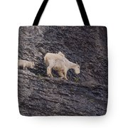 Out On A Ledge Tote Bag