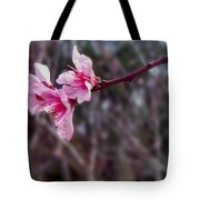 Out On A Limb Tote Bag