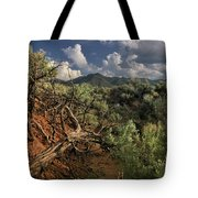 Out On The Mesa 2 Tote Bag