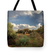 Out On The Mesa 4 Tote Bag