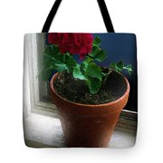 Out On The Old Sunporch Tote Bag
