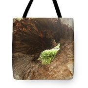 Out The Other Side Tote Bag