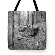 Outcrop, Woods, Dipton Burn Tote Bag