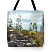 Outlook Hill, Governors Island Tote Bag