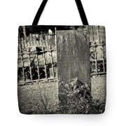 Outside The Gate Tote Bag