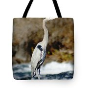 Outstanding On His Rock Tote Bag