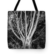 Outstretched Tote Bag