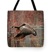 Outta Here  Tote Bag