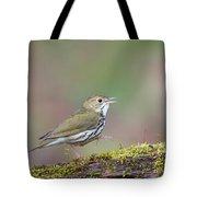 Ovenbird Tote Bag