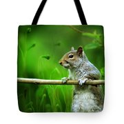 Over The Fence Full Color Tote Bag