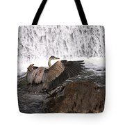 Over The Rocks We Go Tote Bag