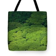 Over The Treetops Tote Bag