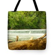 Over The Trunk Tote Bag