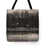 Overflight Tote Bag