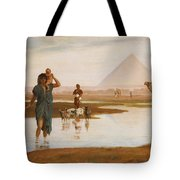 Overflow Of The Nile Tote Bag