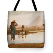 Overflow Of The Nile Tote Bag by Frederick Goodall
