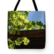 Overhead Grape Harvest - Summertime Dreaming Of Fine Wines Tote Bag