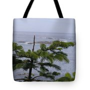 Overlook Tote Bag
