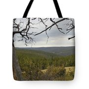 Overseeing The Canyon Tote Bag