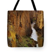 Owhyee River Tote Bag