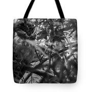 Owl-1-bw Tote Bag