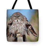 Owl 4 Tote Bag