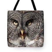 Owl 6 Tote Bag