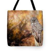 Owl 9 Tote Bag