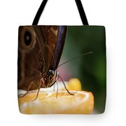 Owl Butterfly Feeding On An Orange Tote Bag