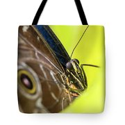 Owl Butterfly In Yellow Flower Tote Bag